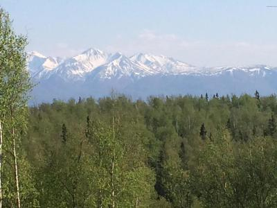 Wasilla Residential Lots & Land For Sale: 4720 Yundt Drive