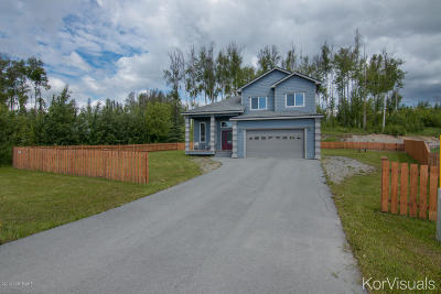 Wasilla Single Family Home For Sale: 10254 W Clay Chapman Road