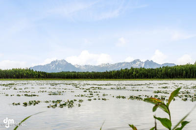 Wasilla Residential Lots & Land For Sale: 4305 Chignaki Pond Circle