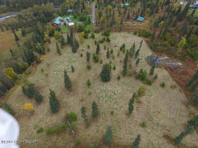 Ninilchik Residential Lots & Land For Sale: Tr A Deep Creek Heights