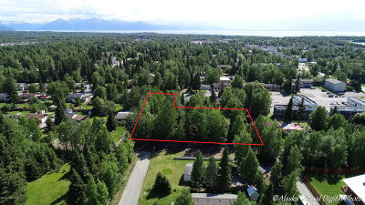 Anchorage, Chugiak, Eagle River Residential Lots & Land For Sale: 3720 78th Avenue