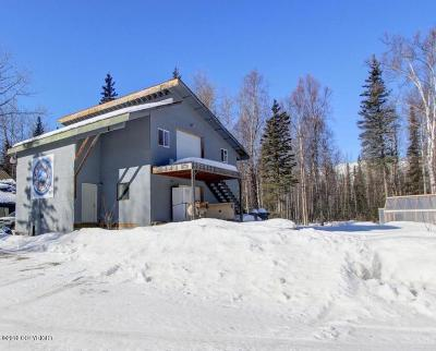 Palmer Commercial For Sale: NHN Wasilla-Fishhook Road