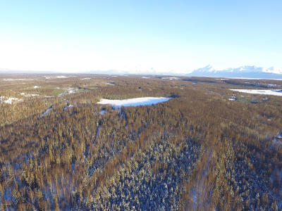 Wasilla Residential Lots & Land For Sale: 1622 Byron Avenue