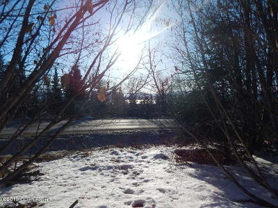 Homer Residential Lots & Land For Sale: L2 Arctic Moon