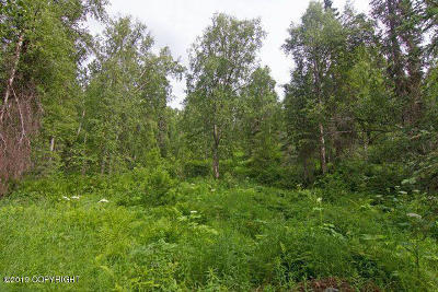 Talkeetna Residential Lots & Land For Sale: 22047 Rampart Loop