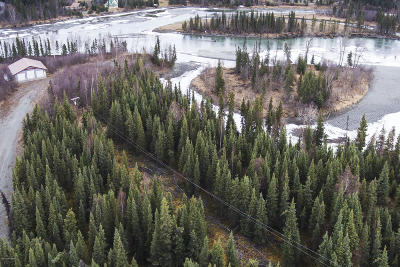Soldotna Residential Lots & Land For Sale: 31864 Moonshine Drive