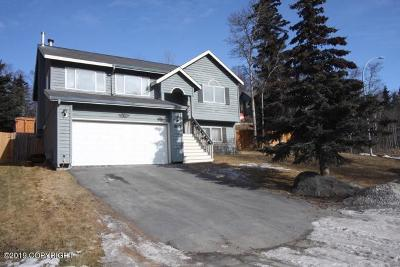 Chugiak, Eagle River Single Family Home For Sale: 18643 Danny Drive