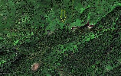 Talkeetna Residential Lots & Land For Sale: Tr A ASLS #92-126 No Road