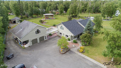 Wasilla Single Family Home For Sale: 200 E Snowbird Lane &180