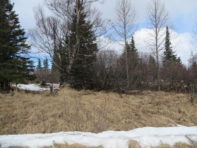 Ninilchik Residential Lots & Land For Sale