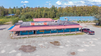 Wasilla Commercial For Sale: 951 S Hobson's Choice Lane