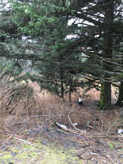 Kodiak AK Residential Lots & Land For Sale: $65,000