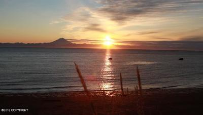 Kenai Residential Lots & Land For Sale: 35453 Kalifornsky Beach Road