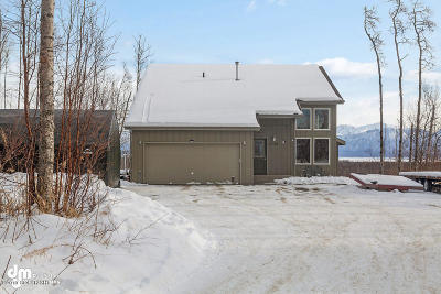 Wasilla Single Family Home For Sale: 5101 S Outrigger Drive