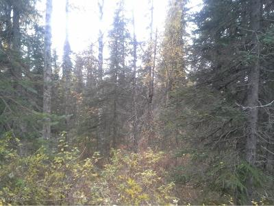 Talkeetna Residential Lots & Land For Sale: Tr E No Road