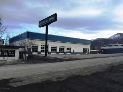 Eagle River Commercial For Sale: 16400 Brooks Loop