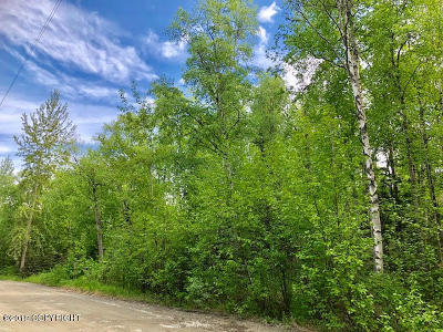 Wasilla Residential Lots & Land For Sale: NHN T17N R1WS17 LA4