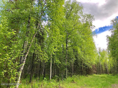 Wasilla Residential Lots & Land For Sale: NHN T17N R1WS17 LB9
