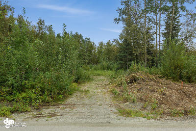 Wasilla Residential Lots & Land For Sale: 5626 Rutan Avenue