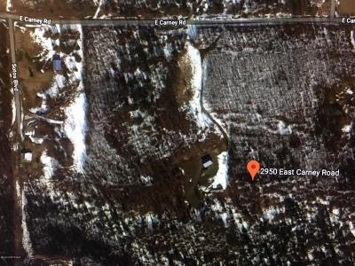 Wasilla Residential Lots & Land For Sale: 2950 Carney Road