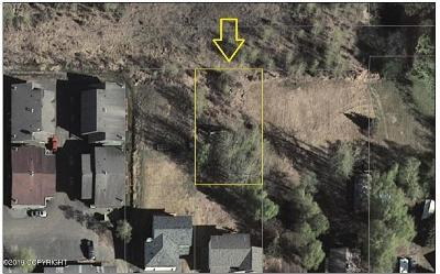 Anchorage Residential Lots & Land For Sale: L9C2 73rd Avenue
