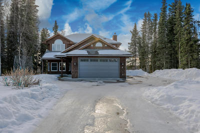 Kenai, Soldotna Single Family Home For Sale: 240 Daisy Lane