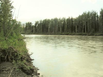Talkeetna Residential Lots & Land For Sale: L6-7 No Road