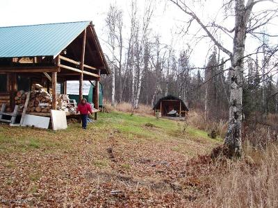 1d - Matanuska Susitna Borough Single Family Home For Sale: Tr A No Road Chase Area