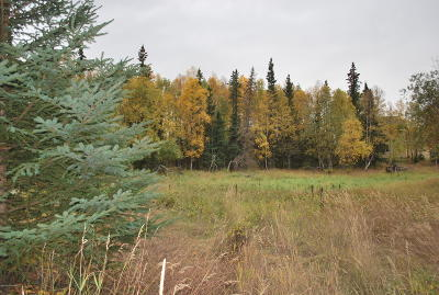 Anchorage Residential Lots & Land For Sale: L3 B9 Beverly Drive