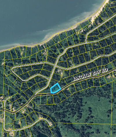 Seldovia Residential Lots & Land For Sale: L25 B12 Barabara Heights Road