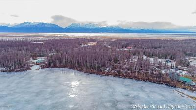 Wasilla Residential Lots & Land For Sale: 4631 Lucy Lake Road