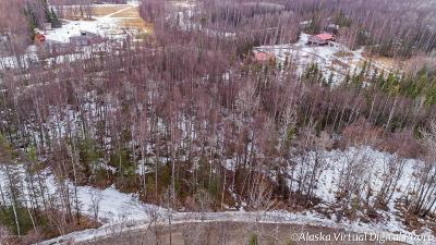 Wasilla Residential Lots & Land For Sale: 4640 Lucy Lake Drive