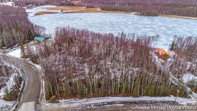 Wasilla Residential Lots & Land For Sale: 5800 Hayfield Road