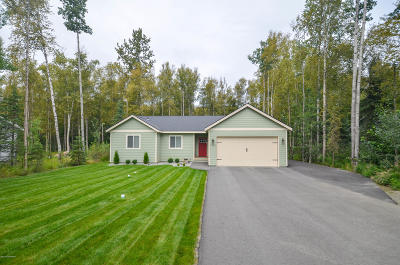 Wasilla Single Family Home For Sale: 7041 S Turner Drive