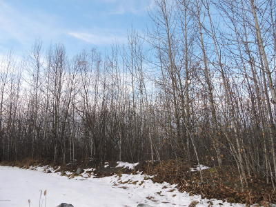 Chugiak Residential Lots & Land For Sale: Tr 3 Whaley