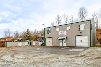 Eagle River Commercial For Sale: 11145 Ashley Park Lane