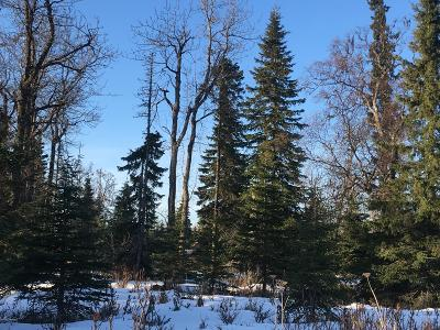 Ninilchik Residential Lots & Land For Sale: Oil Well Road