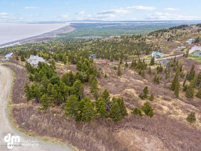 Anchorage Residential Lots & Land For Sale: 7135 Big Mountain Drive