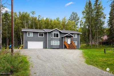 Wasilla Single Family Home For Sale: 3830 S Tradewinds Circle