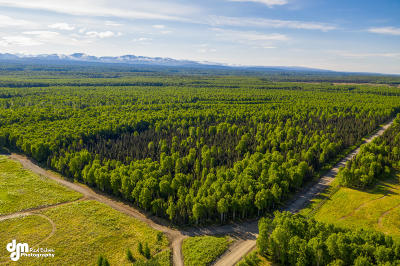 Talkeetna Residential Lots & Land For Sale: 30205 Gries Strasse Street