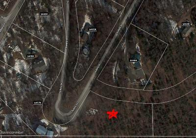 Chugiak Residential Lots & Land For Sale: NHN Sullins Drive