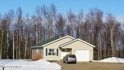 Wasilla Single Family Home For Sale: 14061 W Sandy Hills Circle
