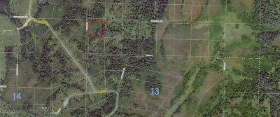 Anchor Point Residential Lots & Land For Sale: H40 Alaskan Wildwood Ranch(r)