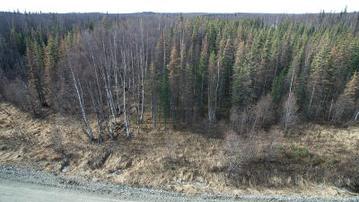 Wasilla Residential Lots & Land For Sale: 3058 Gaviidae Drive