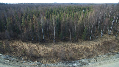 Wasilla Residential Lots & Land For Sale: 3118 Gaviidae Drive