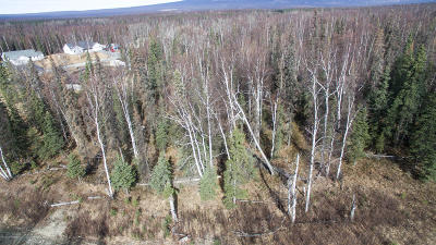 Wasilla Residential Lots & Land For Sale: 3197 Gaviidae Drive
