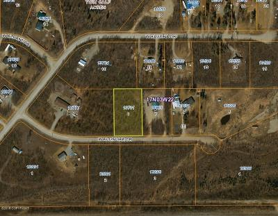 Big Lake Residential Lots & Land For Sale: 13701 Klondike Drive
