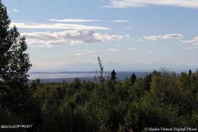 Anchorage Residential Lots & Land For Sale: 7330 Huffman Road