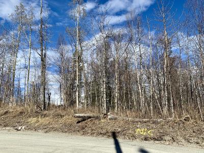 Palmer Residential Lots & Land For Sale: 1131 Lower Road