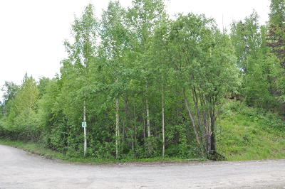 Big Lake Residential Lots & Land For Sale: 5750 View Circle